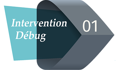 intervention debug prestashop